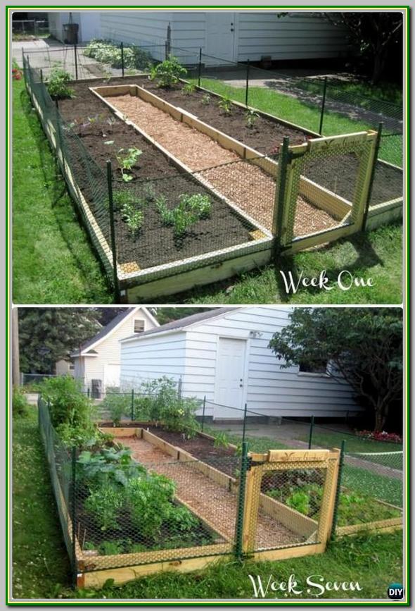 Ideas How To Create A Thriving Organic Garden Vegetable Garden