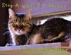 Stay A While Cat Shelter Kitten And Cat Adoption Cat Sponsors Humane Cat Shelter Cleveland Ohio 2014 Calendars A Cat Adoption Cat Shelter Cats And Kittens