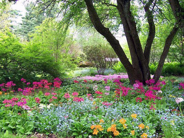Berkshire Botanical Garden | The Berkshire Botanical Garden Was Founded In  1934 By The Lenox Garden