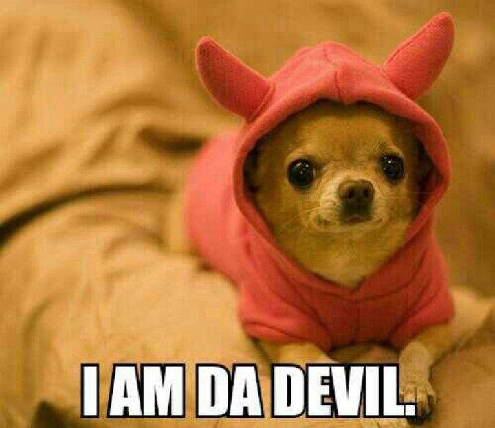 I am da devil.