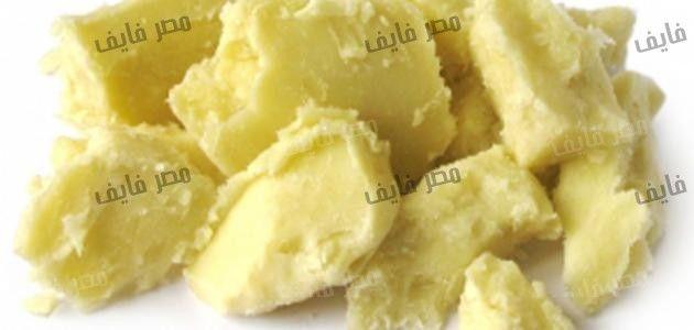 فوائد زبدة الشيا للجسم و البشرة و الشعر Food Cheese Dairy