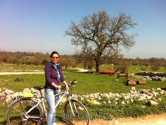 Spring in Puglia - Let's go biking !  How to explore the beautiful countryside ? On a bike of course :)