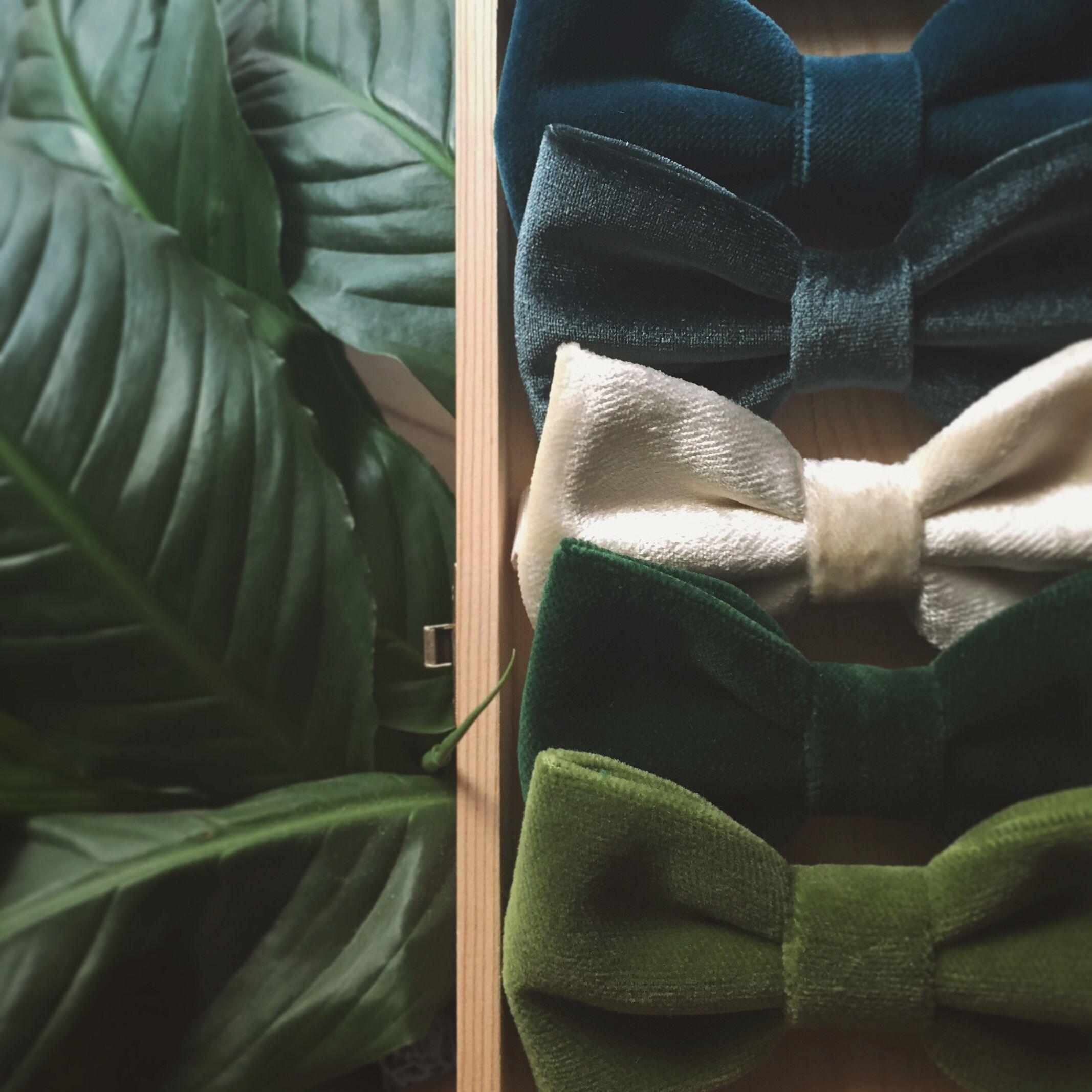 Velvet Bow ties, greenery inspiration. @scoccapapillon Winter Collection 2019. #greenery #botanical #velvet #velvetbowtie #bowtie #groom  #groomsmen #fallwedding #green #winterwedding #wedding #tie #botanicinspiration #botanicalwedding #vintagewedding #bohowedding #bohemianwedding #tropicalwedding #organicwedding #ceremony #rusticwedding #greenerywedding #teal #olive #forest #etsy #etsyseller #etsyinspiration #men #mensfashion #gq #mensstyle