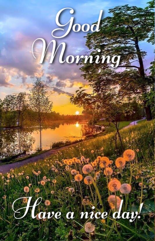 Good Morning Have A Nice Day Good Morning Quotes Good Morning Beautiful Images Good Morning Beautiful Pictures