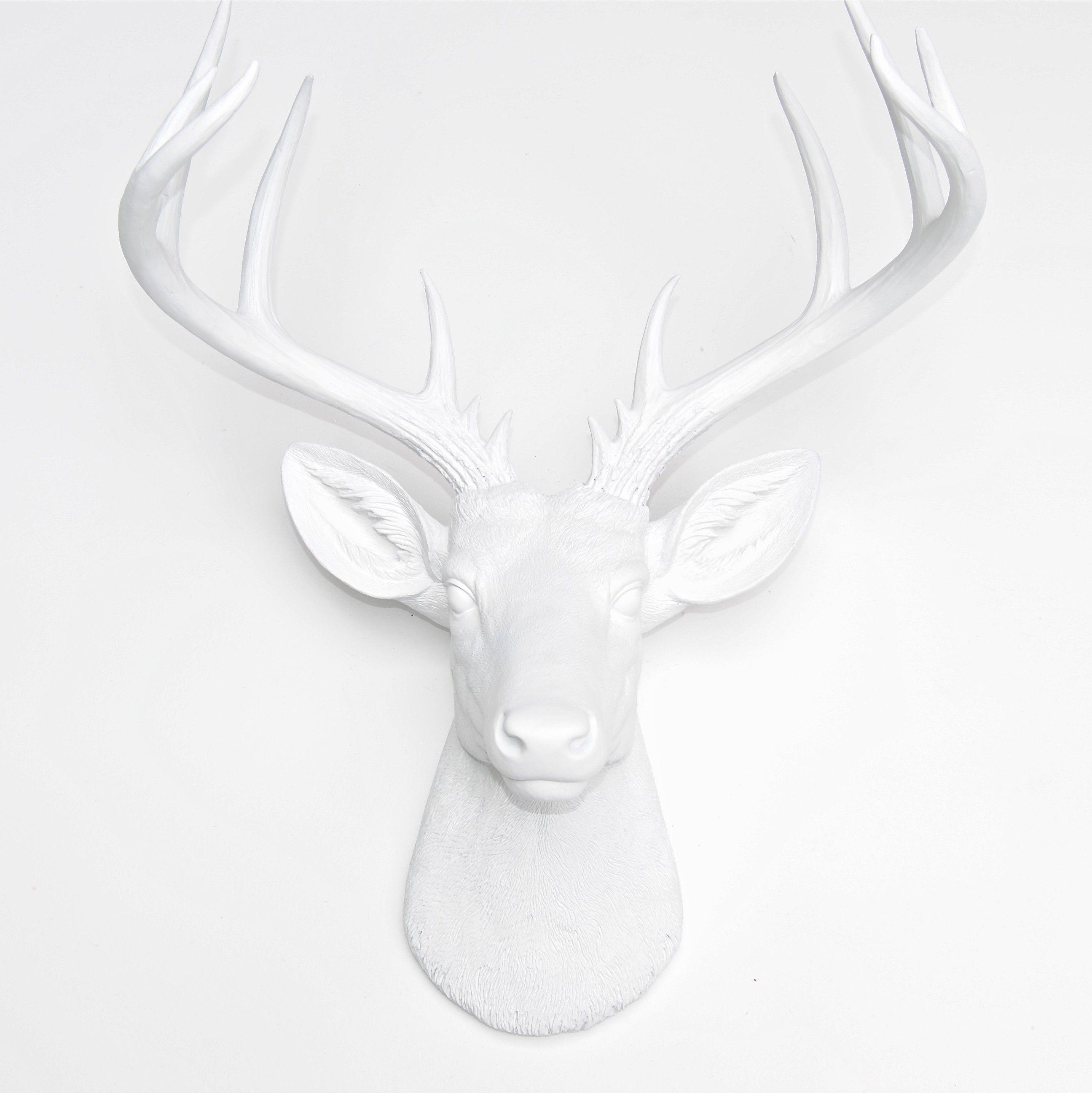 Large 14 Point Deer Head Wall Mount