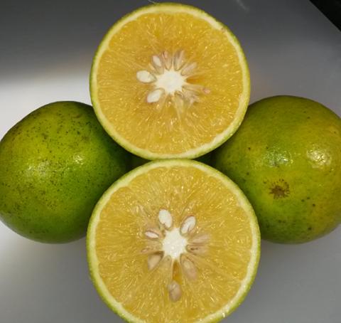 img La mayor propiedad de la naranja es su alto contenido