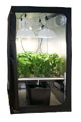 Cultivate your plants indoor in grow tents with a hydroponic system an ideal way for  sc 1 st  Pinterest & Cultivate your plants indoor in grow tents with a hydroponic ...