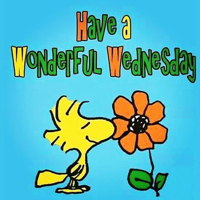 Good Morning Snoopy Wednesday : Good morning and happy wednesday goodmorning
