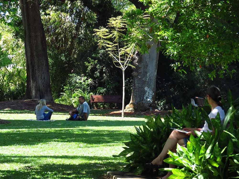 Anderson Park Botanic Gardens, Townsville (#ParkMyVan #VanHire #JethroBatts www.parkmyvan.com.au)
