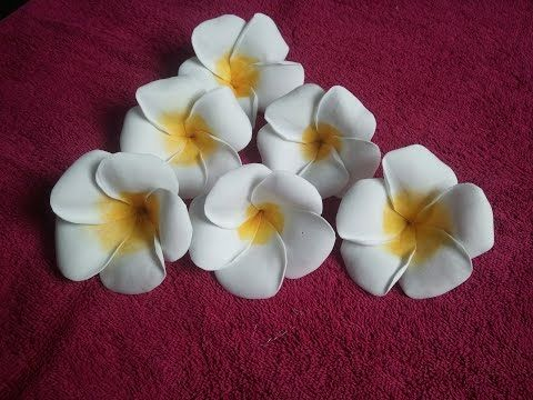 Learn How To Make Foam Plumeria Flower Paper Flowers Diy Paper Flowers Flower Making