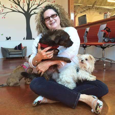 Dogster Hero Vivian Goldbloom Of Seattle S Emerald City Pet