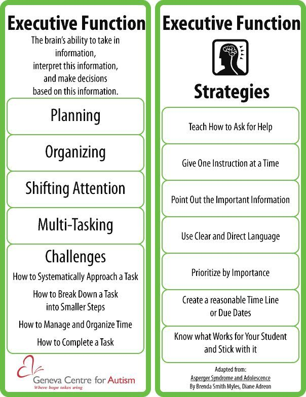 executive function sample report - Google Search Plannng - Goals - sample executive reports