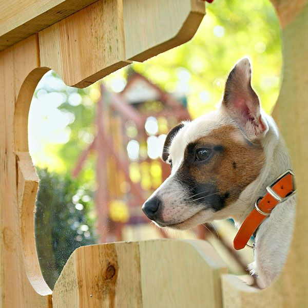 Show some puppy love with this bone-shape fence window. Made with a downloadable stencil and an acrylic sheet, it provides a view of the outside world -- without letting your dog escape into it.