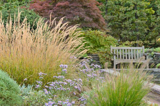 new england new england garden best ornamental grasses ornamental grasses for new england