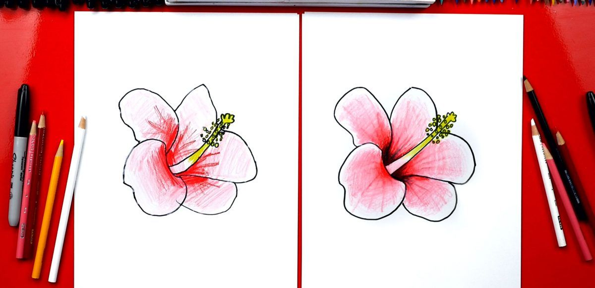 How To Draw A Hibiscus Flower Art For Kids Hub With Images
