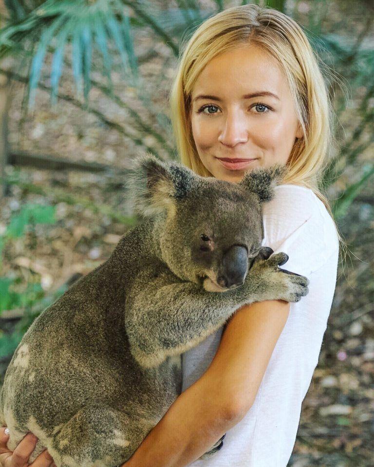 Kangaroo Selfie & Koala Hug | Kangaroo, Hug, Animals - photo#42