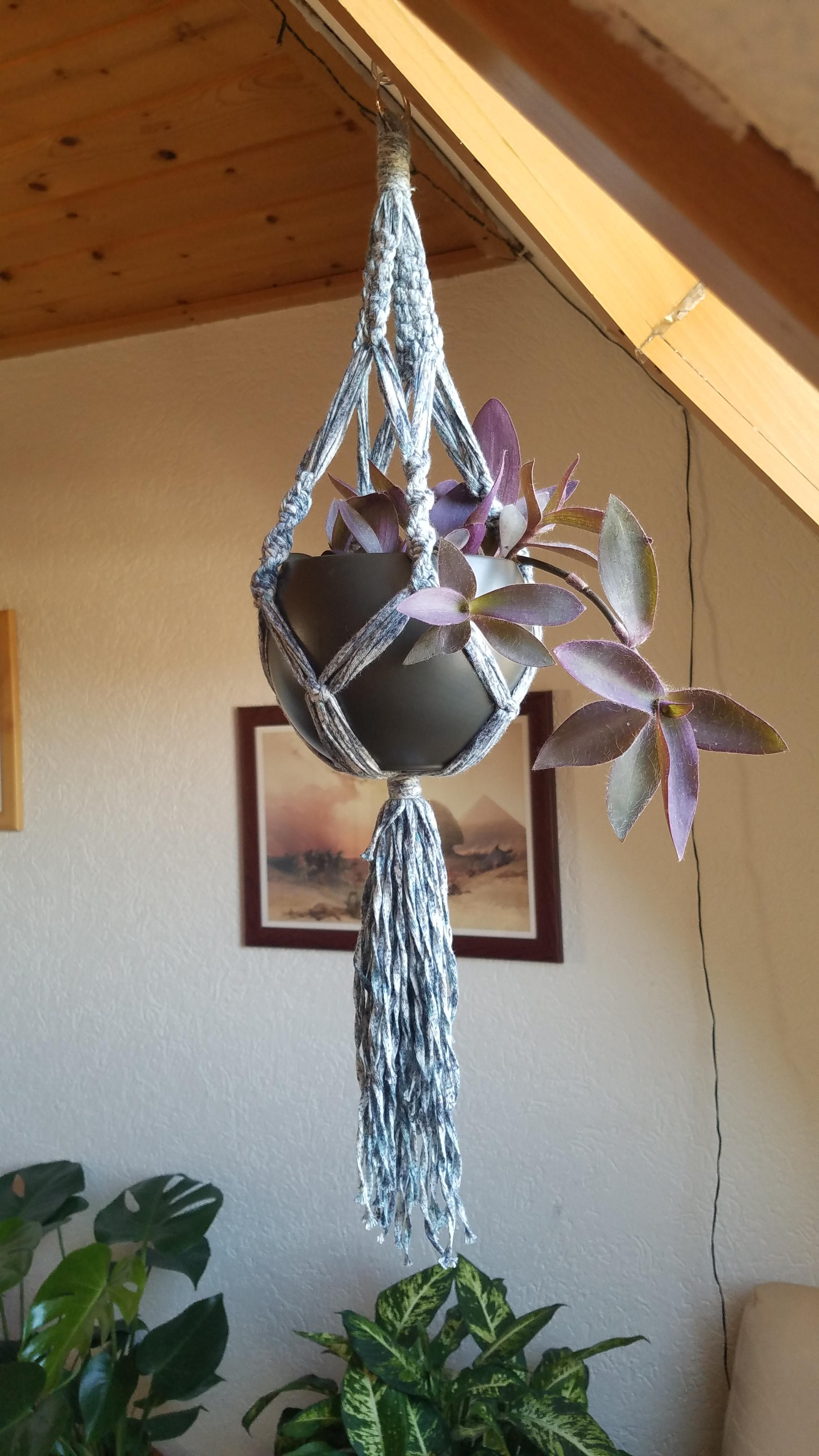 Really Happy With How My Macram Hanger For My Purple