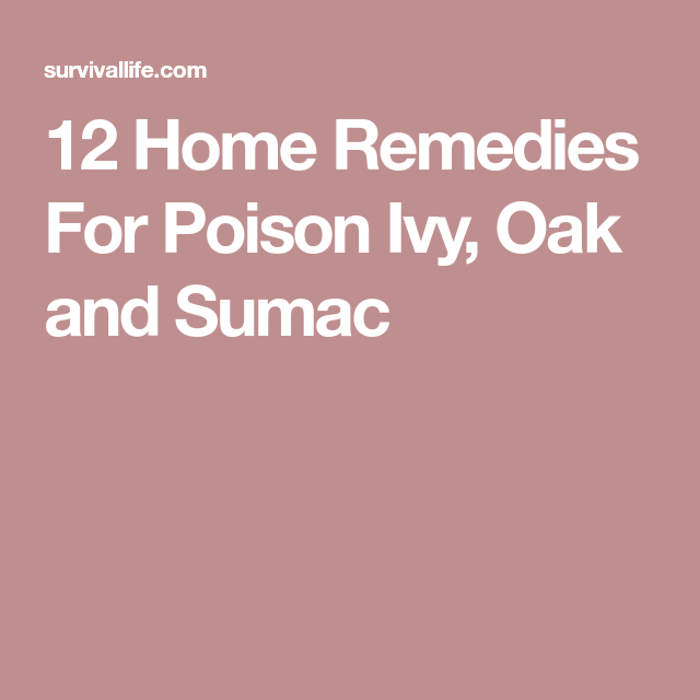 12 Home Remedies For Poison Ivy Oak And Sumac Eyestyepop Eye