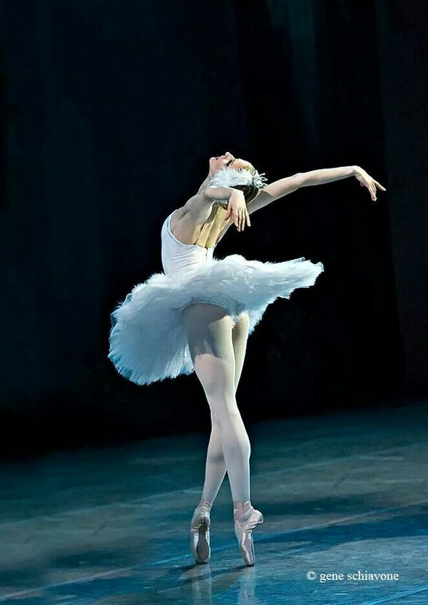 Imagen Sobre Fotografia De Danza De Coloso De Rodas Teatro En
