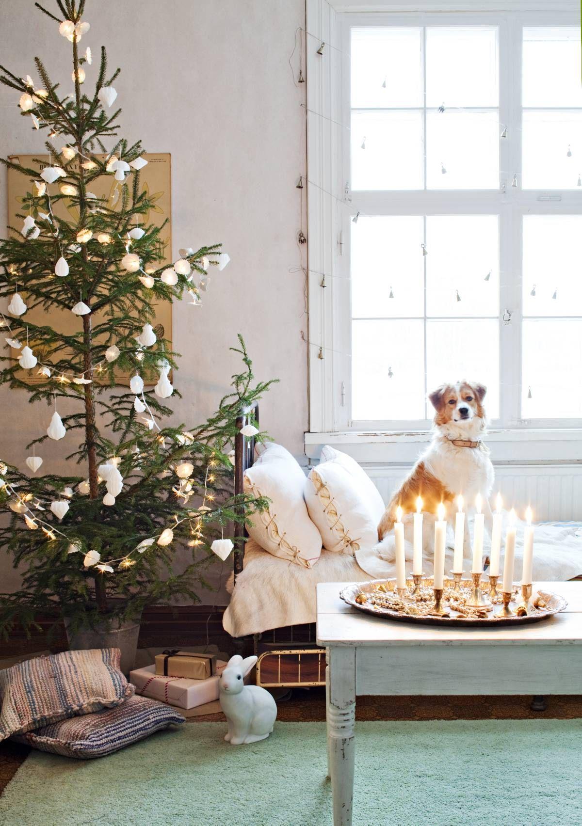 Olohuoneessa on kolme sohvaa. Penni-koira viihtyy vanhan tavaran myymälästä ostetulla rautasängyllä. Tyynynpäälliset on tehty vanhoista keittiöpyyhkeistä, purjerenkaista ja pellavanarusta. Kuusenjalkana on sinkkiämpäri. Sen sisällä on laudanpala, johon poratun reiän ansiosta kuusi pysyy pystyssä. Pupulamppu on Pennin yövalo.