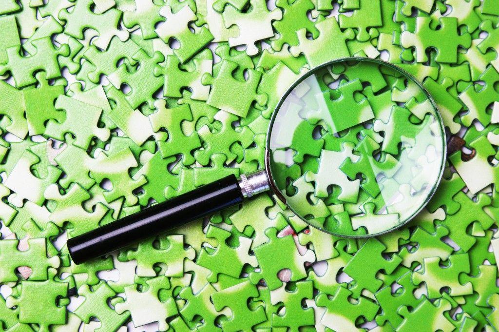 shutterstock 115589506 1024x681 Mas afinal de contas, o que é sustentabilidade?
