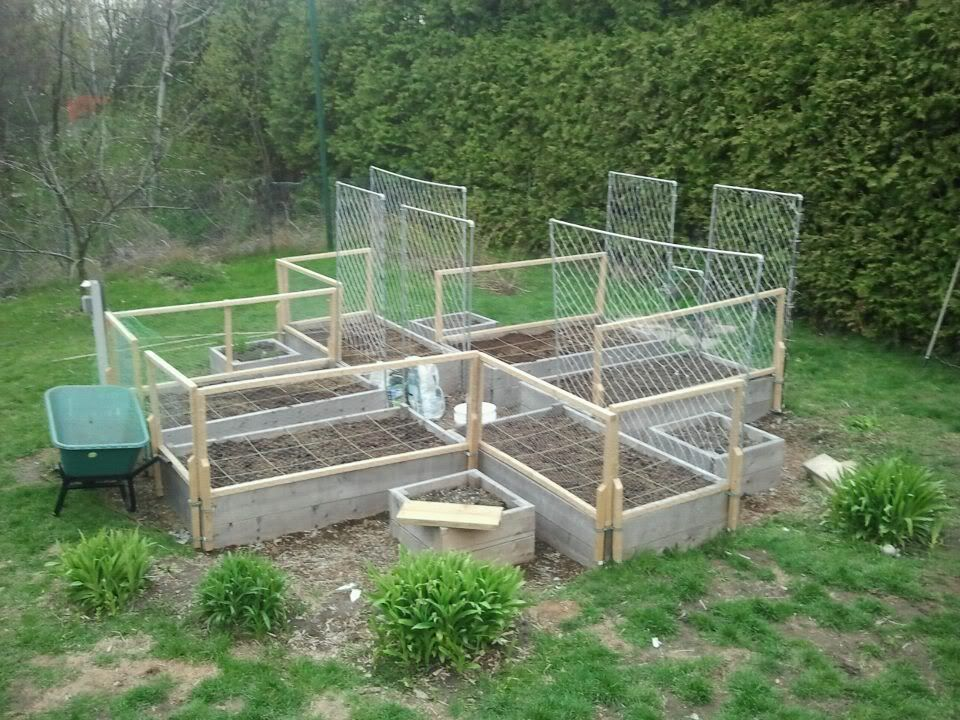 Raised Bed Vegetable Garden Cages Steel Fruit Cage Raised Garden