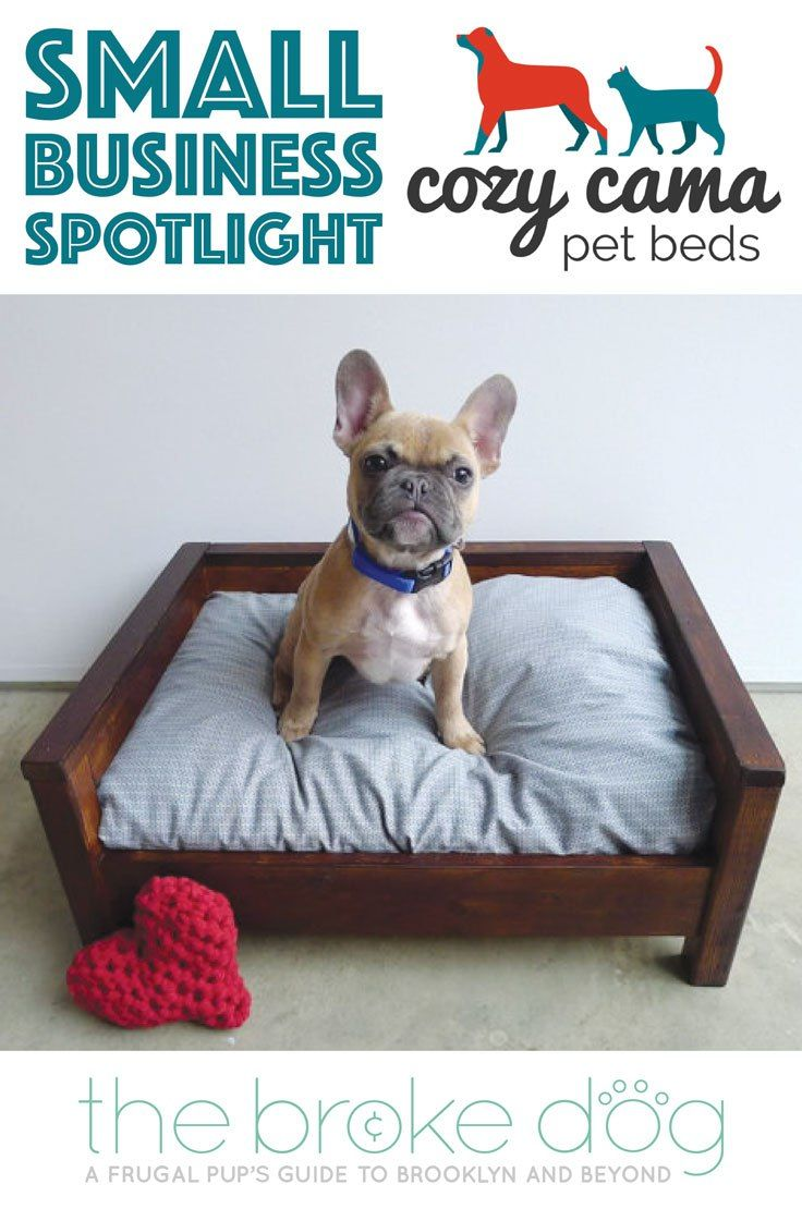Cozy Cama Small Business Spotlight Interview The Broke Dog Dogs Dog Giveaways Dogs Diy Projects