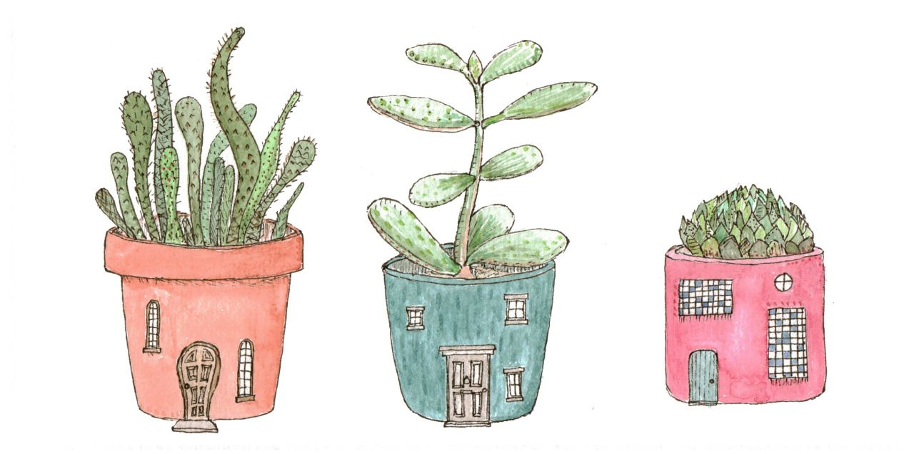 house plants drawing. drawacity u201c house plants u201d drawing d