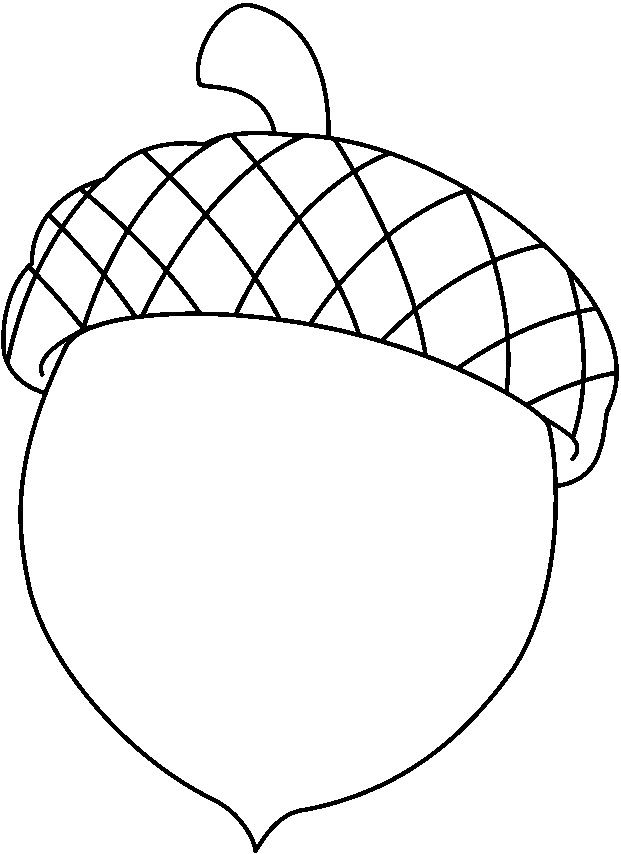 acorn coloring page # 0