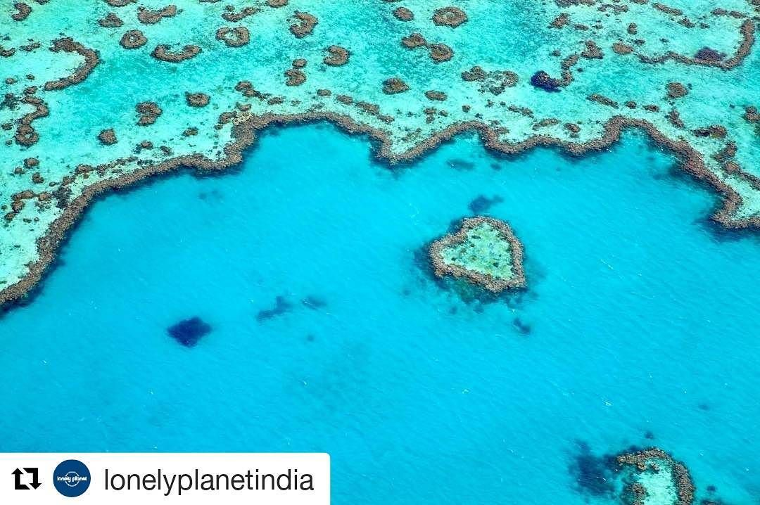 #Repost @lonelyplanetindia with @repostapp  This is an easy one! Guess this place in #Australia that has the largest coral reef in the world.  Image by: Matt Munro/Lonely Planet  #lonelyplanetindia #lpin #lpindia #travel