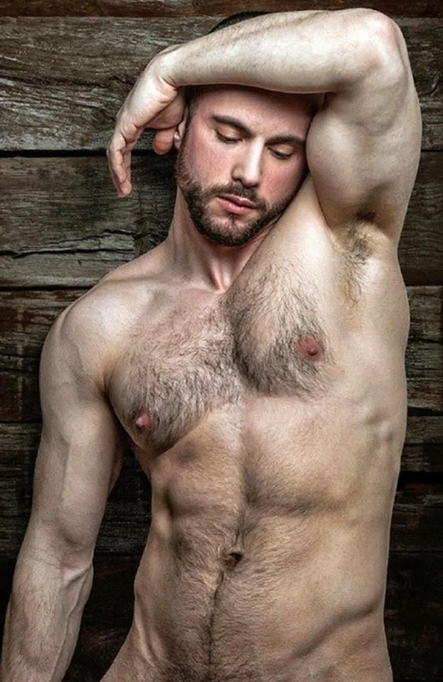 nude hairy bear men