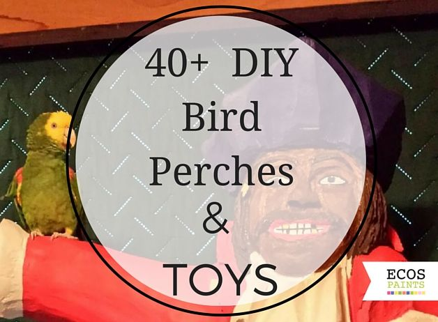 Discount Bird Toys : Pin by borax for fleas on diy pet toys pinterest birds diy bird