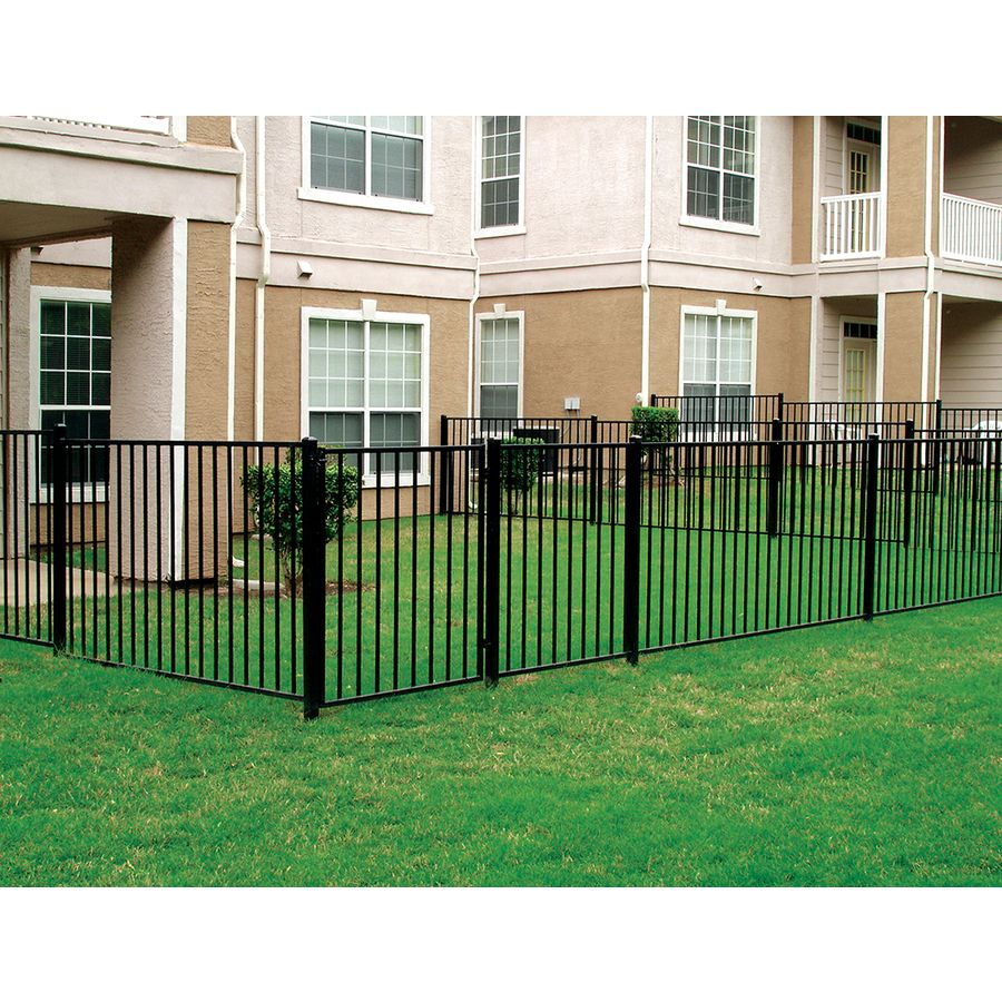 Fences And Gates: Shop Black Steel Fence Gate (Common: 60-in X 42-in; Actual