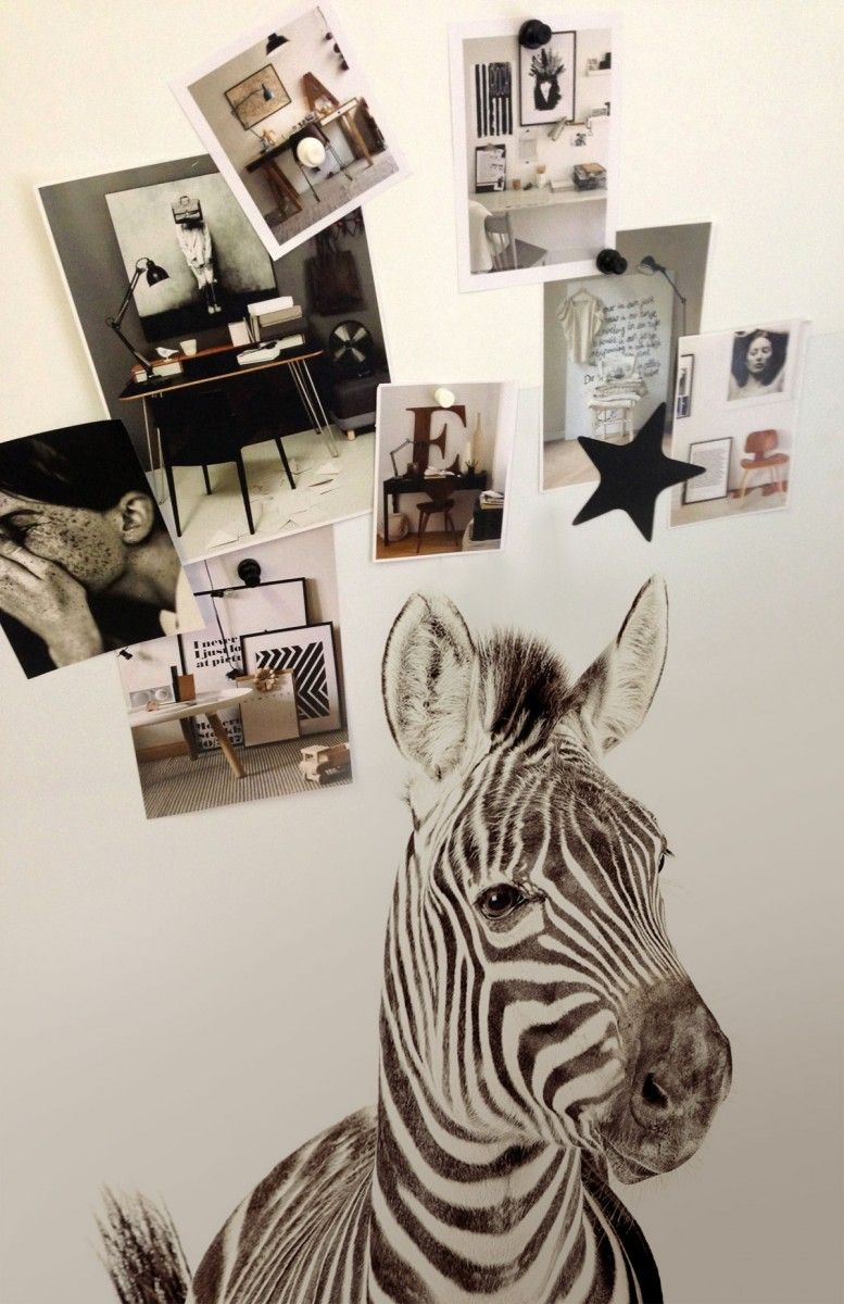 I might need this zebra magnetic wallpaper (or a bunny? he's cute too)