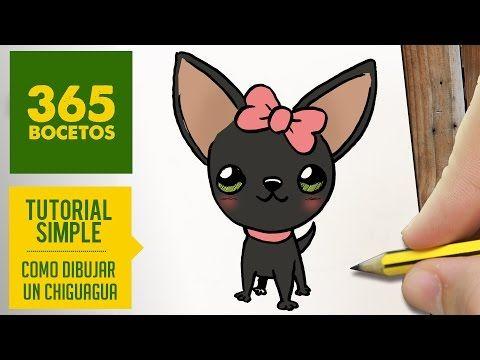 Youtube Como Dibujar Un Perro Perros Chihuahua Perros