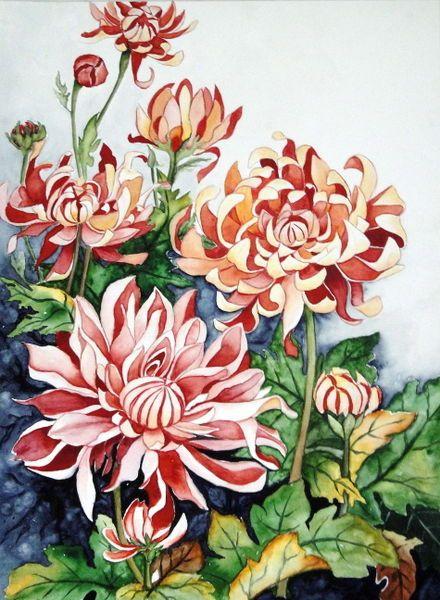 Watercolour 'Chrysantheme 1' von Maria Inhoven bei artflakes.com als Poster oder Kunstdruck