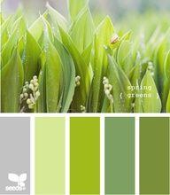 Grün mit vielen Schattierungen