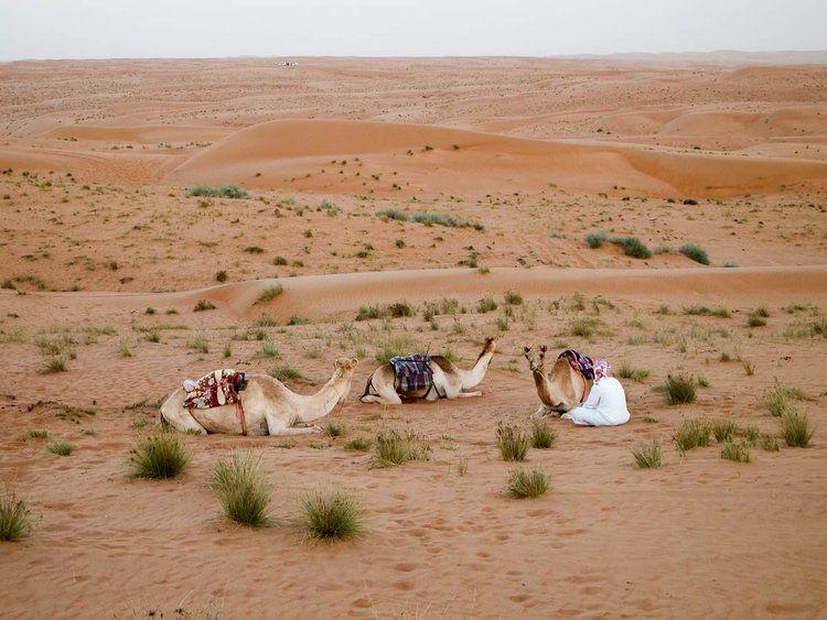 Meine Schonsten Reiseziele Oman Alltagspioniere Travel Around Countries Of The World Oman