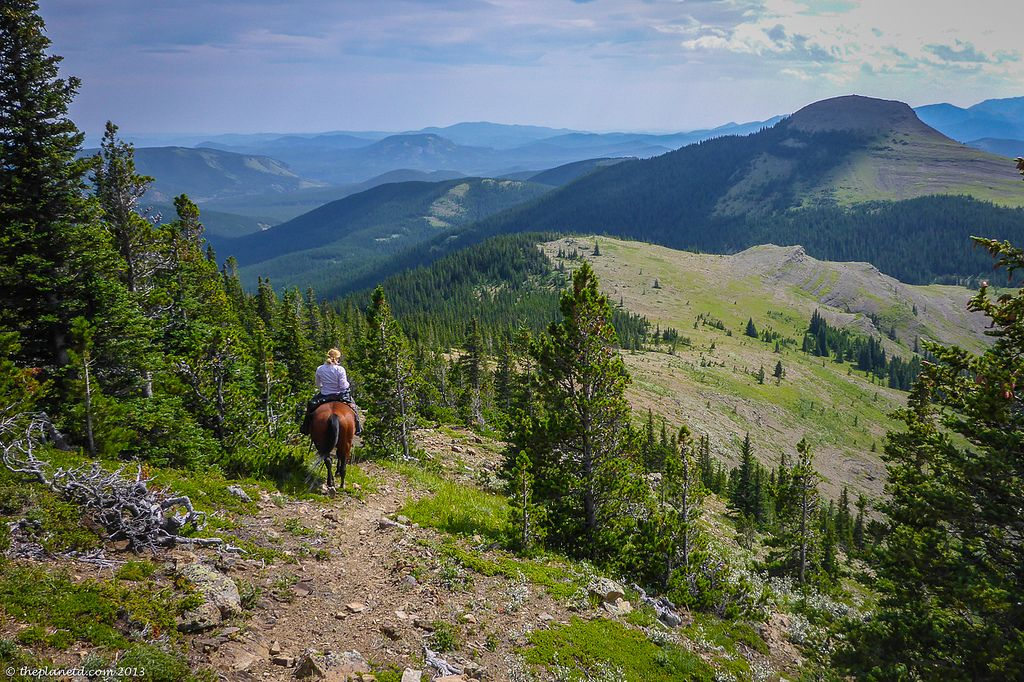 A High Mountain Trail Ride, You're Buns Have Come a Long Way Baby! | The Planet D