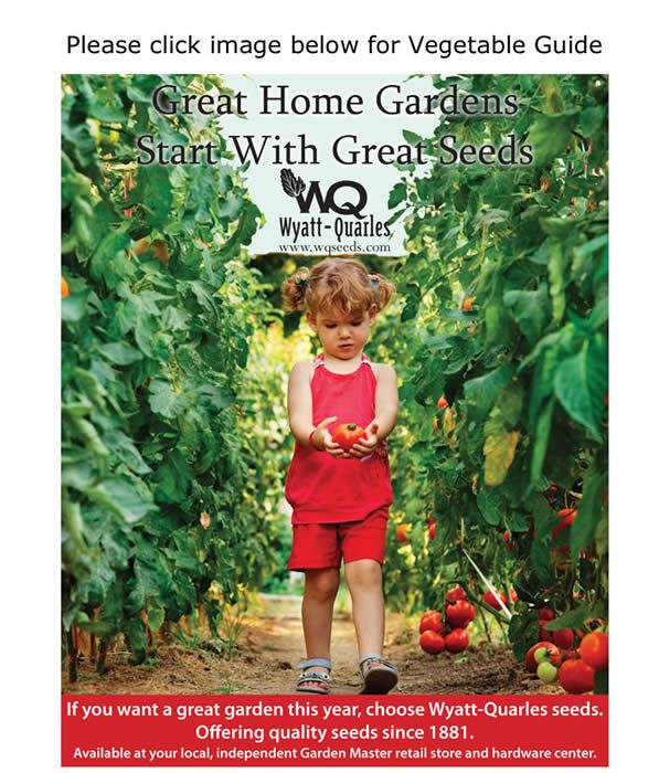 Planting Guide For Nc Vegetable Planting Guide Garden Gifts Plants
