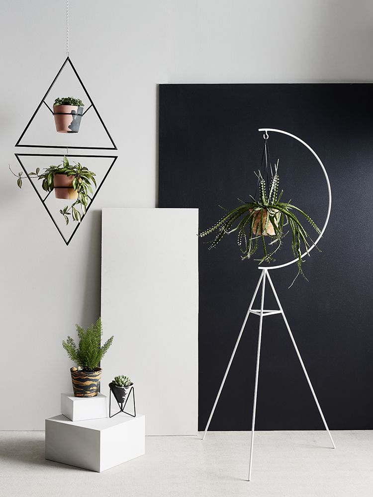 FIRST LOOK: New Capra Designs planters and plant stands | Hanger ...