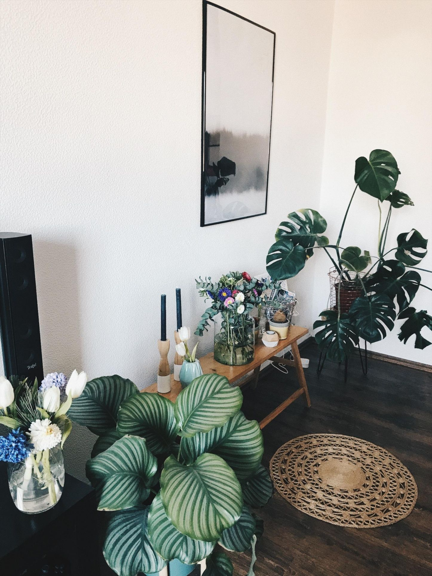 Living Plants Pflanzen Cozy Wohnzimmer Deko von Pflanzen