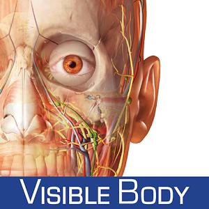 Human Anatomy Atlas apk v5 0 43 (Data+Obb) | CRACKED ANDROID GAMES
