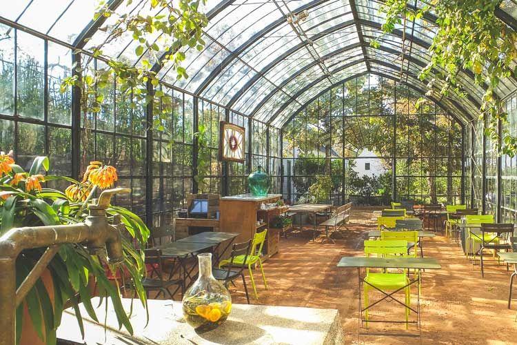 Greenhouse restaurant babylonstoren picnic spots in cape