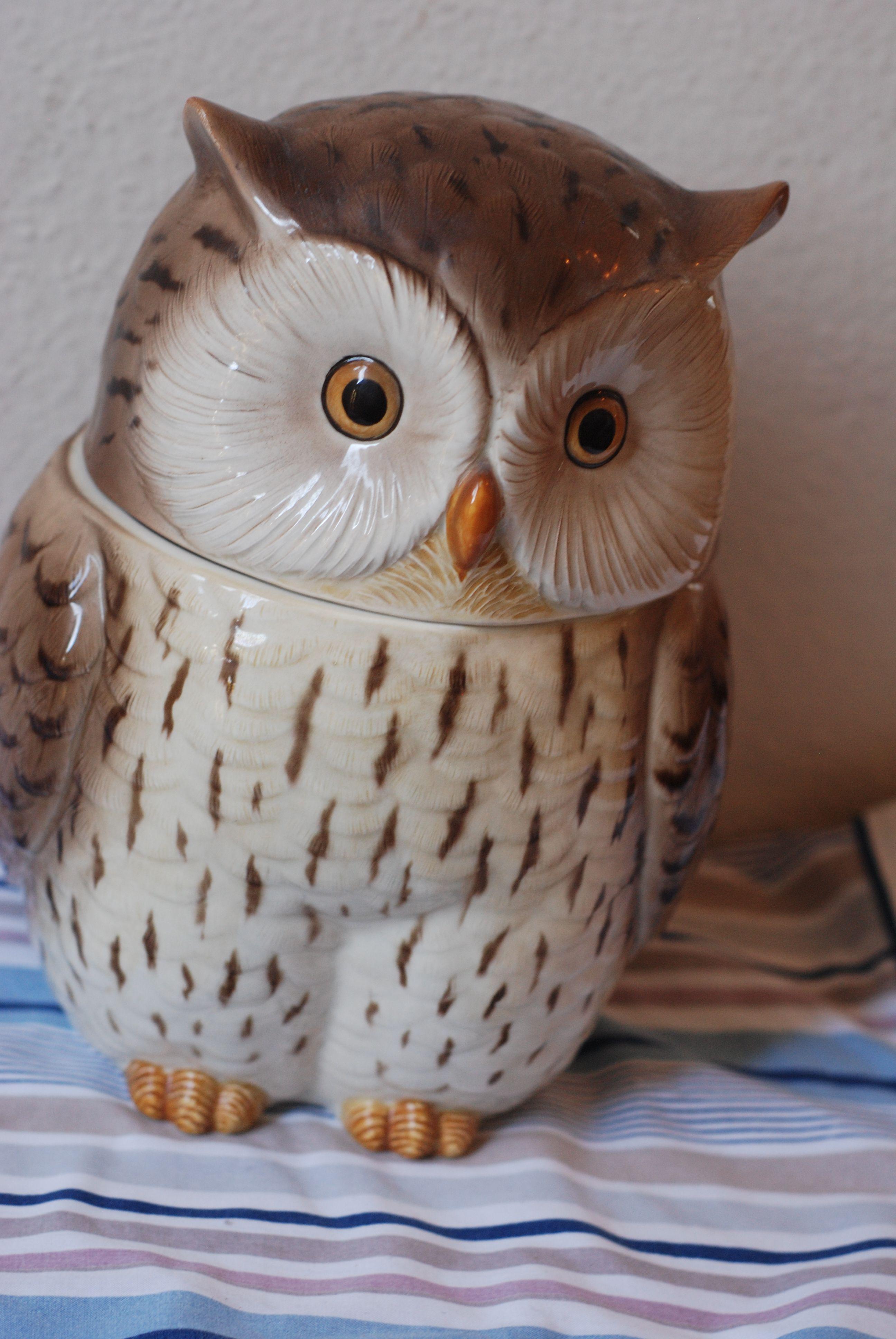 Owl cookie jar. Love! | Antiques/Vintage | Pinterest | Eule, Lustige ...