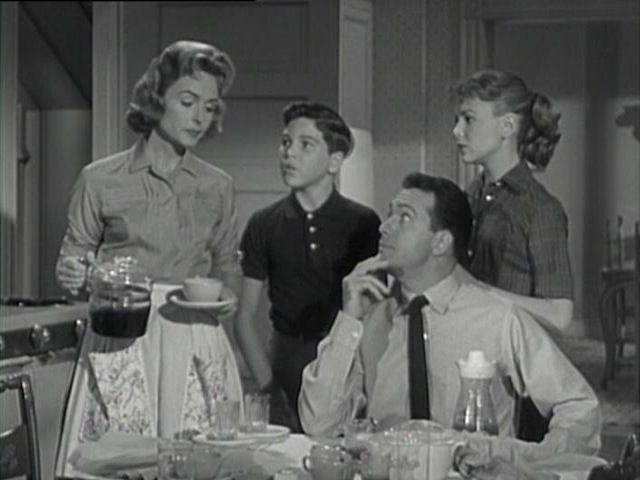 Donna Reed Show~Her house was always clean, she was well groomed, her kids were adorable and her husband was a doctor...lucky gal.
