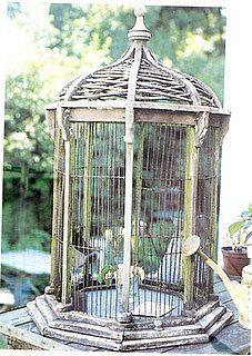 D clinaison autour des cages oiseau les enfants du - Cage oiseau decorative interieur ...