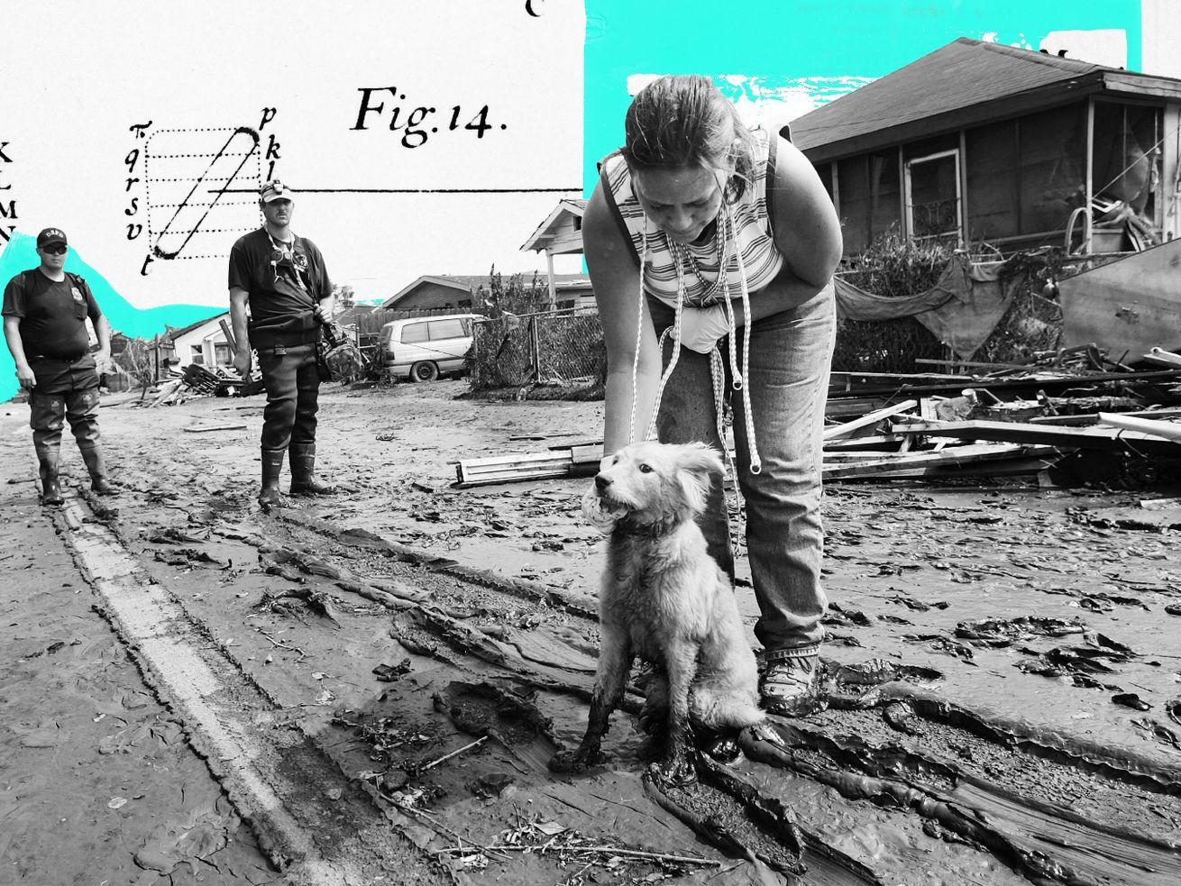 Hurricane Katrina inspired a national pet evacuation