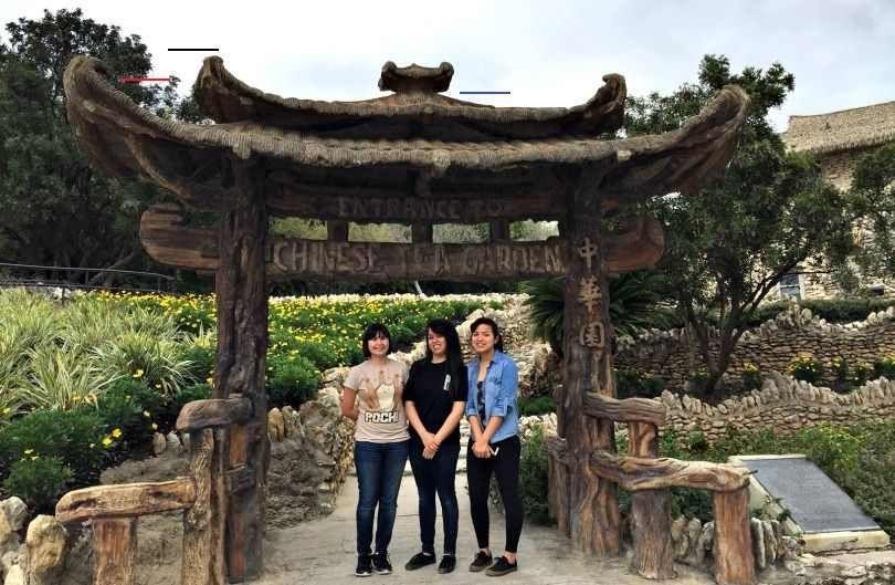Tour San Antonio's Asian Gardens San Antonio Things To
