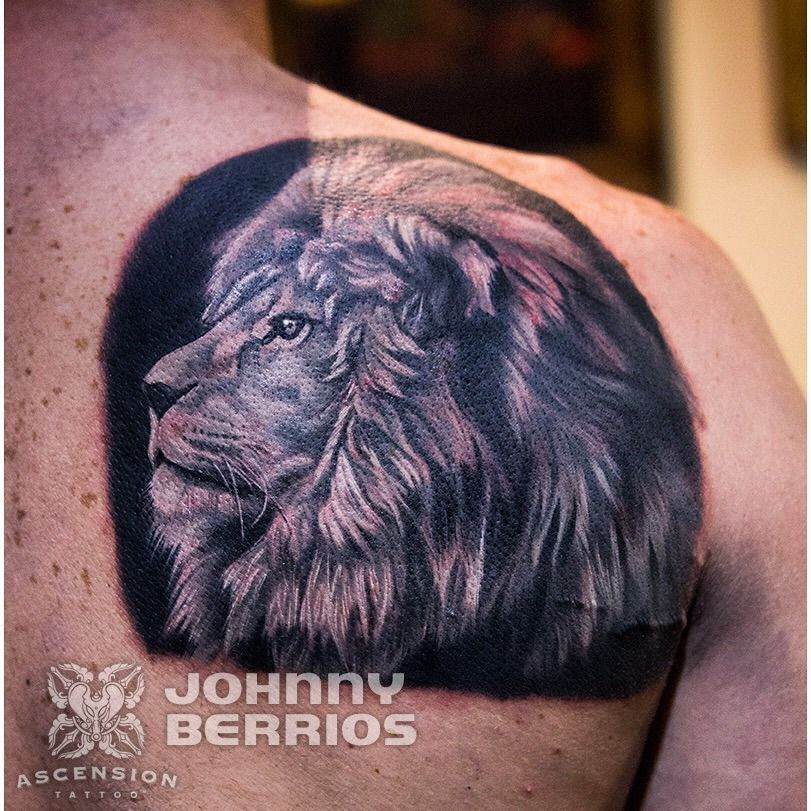 Black and grey realistic lion tattoo by johnny berrios